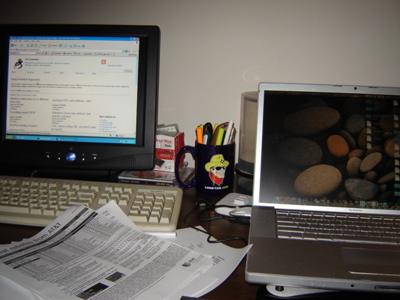 Dual Monitors Mac OS X