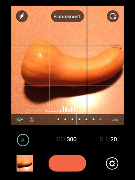 Manual Camera App