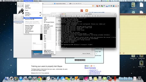 VMware keyboard options